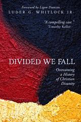 DividedWeFall